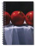 Three Pomegranates Spiral Notebook