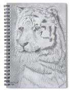 Tiger Watching Spiral Notebook