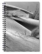 Too Windy Spiral Notebook