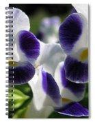 Torenia From The Duchess Mix Spiral Notebook