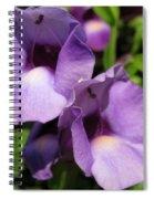 Torenia Named Purple Moon Spiral Notebook