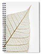 Transparent Leaf Spiral Notebook