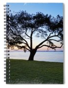 Tree By The Bay Spiral Notebook