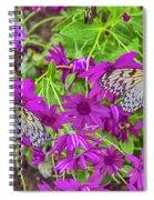 2 Tree Nymph Butterflies Spiral Notebook