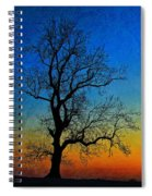 Tree Skeleton Spiral Notebook