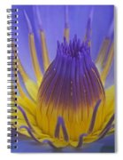 Tropic Water Lily 16 Spiral Notebook