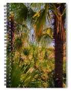Tropical Forest Palm Trees In Sunlight Spiral Notebook