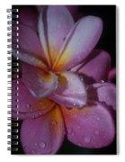 Tropical Rains Spiral Notebook