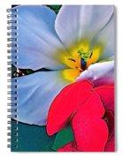 Tulip 5 Spiral Notebook
