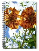 Two Tigers 'n' Sky Spiral Notebook