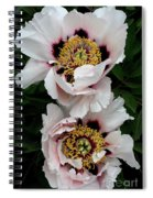Two Together Spiral Notebook