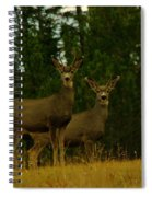 Two Young Bucks Spiral Notebook