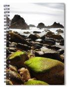 Ursa Beach Spiral Notebook