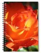 Vibrancy Alive Spiral Notebook