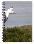 Wandering Albatross Spiral Notebook