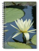 2 Waterlilys Rising Above The Water Spiral Notebook