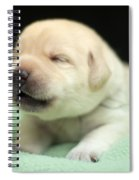 2 Week Old Lab Spiral Notebook