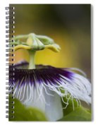 Whispers Of The Heart Spiral Notebook