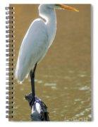 Magnolia White Heron Spiral Notebook