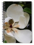 White Magnolia  Spiral Notebook