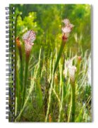 White-topped Pitcher Plant Spiral Notebook