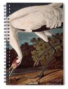 Whooping Crane Spiral Notebook