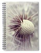 Wiesenbocksbart Spiral Notebook