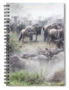 Wildebeest Migration 1 Spiral Notebook