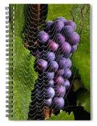 Wine In A Web Spiral Notebook