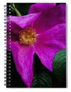 Withered Rose Spiral Notebook