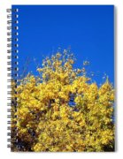 Yellow Autumn Tree Spiral Notebook