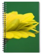 Yellow Spiral Notebook