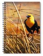 Yellow - Headed Blackbird Spiral Notebook