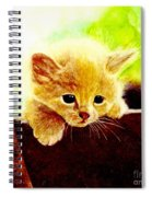 Yellow Kitten Spiral Notebook