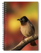 Yellow-vented Bulbul Spiral Notebook
