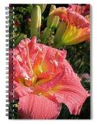 Zona Rosa Daylily Spiral Notebook