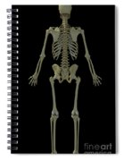 The Skeleton Spiral Notebook