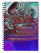 2001047 Spiral Notebook