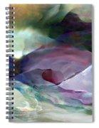 2002039 Spiral Notebook