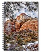 20100101-dsc05481 Spiral Notebook