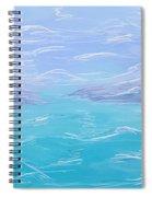 2010011 Spiral Notebook