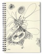 2012 Drawing 37 Spiral Notebook