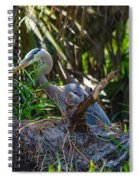 2014 05 16 01 B 0652 Spiral Notebook