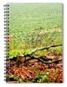 20741 Spiral Notebook