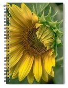 209 Spiral Notebook