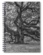 Angel Oak Tree In Black And White Spiral Notebook