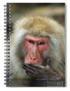 Japanese Macaque Spiral Notebook