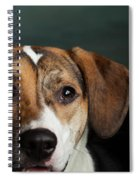 Portrait Of A Mixed Dog Spiral Notebook