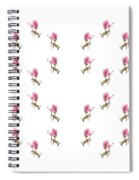 24 Dancing Pink Magnolias Square Spiral Notebook