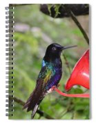 Scenes From Ecuador Spiral Notebook